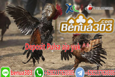 Adu Ayam Online Deposit Pakai Pulsa