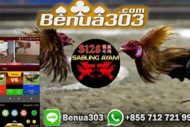 Sabung Ayam Online S1288 Terbaru